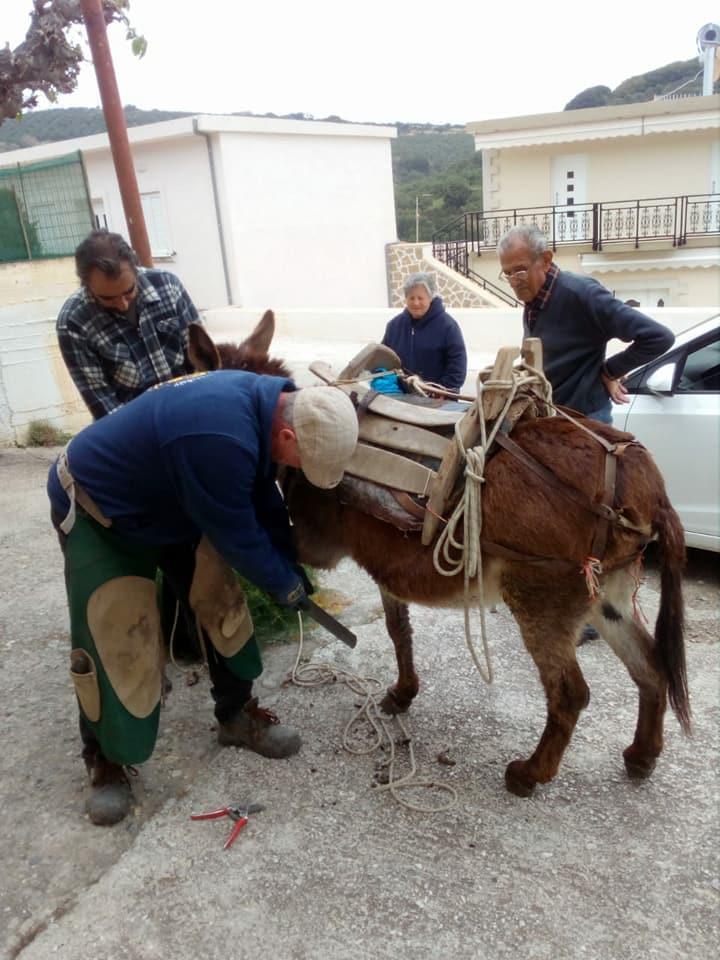 hans1 Bράβευση επισκέπτη - εθελοντή πεταλωτή στη Χερσόνησο