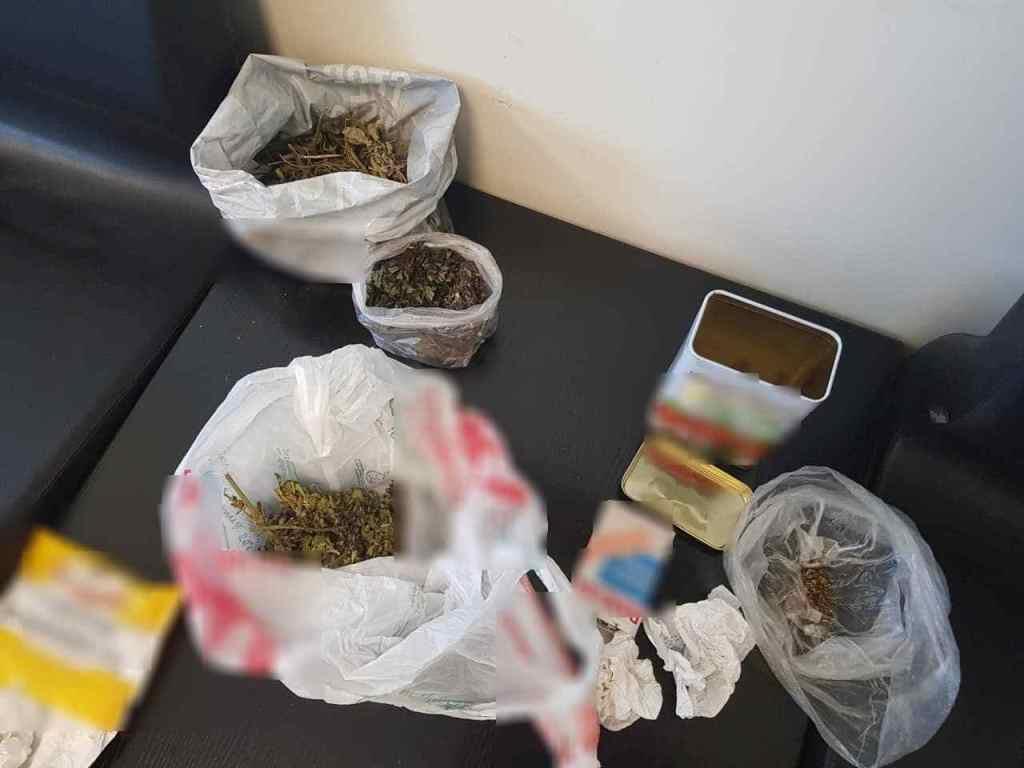 0-3-7 Δυο συλλήψεις για καλλιέργεια χασισόδενδρων
